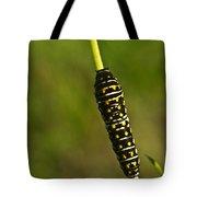 Hymenoptera Larva 2 Tote Bag