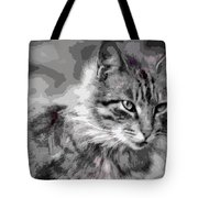 I Am Serious Tote Bag