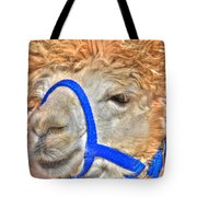 I Know   You Just Lovvvve My Hairdo Don T Ya Tote Bag