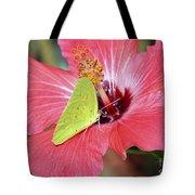 I Love My Hibiscus Tote Bag