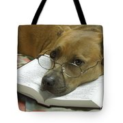 I Read My Bible Every Day Tote Bag