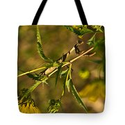 I See You And You Are Mine Tote Bag