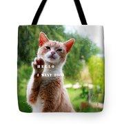 I Want Food Cat Tote Bag