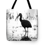 Ibis Pintail Drive Cameron Prairie Nwr Tote Bag