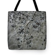 Ice- Coated Hawthorn Branch Tote Bag