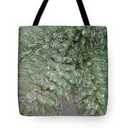 Ice-coated Norway Spruce Tote Bag