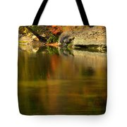 Ice Painting Tote Bag