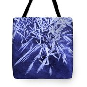 Ice Patterns On Wedge Pond Tote Bag