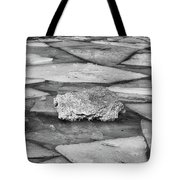 Ice Puzzle Holding Tote Bag