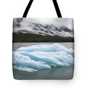 Iceberg In Endicott Arm, Inside Tote Bag
