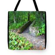 Ichetucknee Stairway Tote Bag