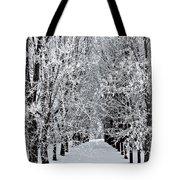Icy Gateway Tote Bag