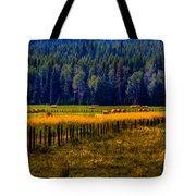 Idaho Hay Bales  Tote Bag by David Patterson