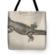 Iguana, 1585 Tote Bag