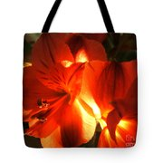 Illuminated Red Orange Alstromeria Photograph Tote Bag