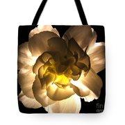 Illuminated White Carnation Photograph Tote Bag