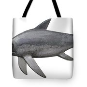 Illustration Of An Eurhinosaurus Tote Bag by Sergey Krasovskiy