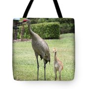 I'm A Big Girl Now Tote Bag