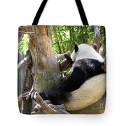 I'm Not Talking To You Tote Bag
