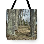 Imagination Pathway Tote Bag