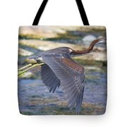 Immature Tricolored Heron Flying Tote Bag