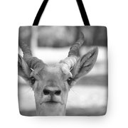 Impala -black And White Tote Bag