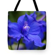 In A Blue Mood Tote Bag