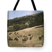 In A Pasture Near Pleasanton Hereford Tote Bag