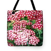 In A World So Small Tote Bag