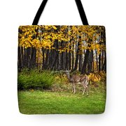 In A Yellow Wood Painted Tote Bag