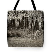 In A Yellow Wood Sepia Tote Bag