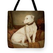 In Disgrace Tote Bag by William Woodhouse