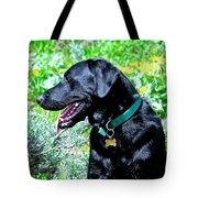 In His Element Tote Bag