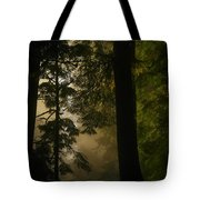 In Soft Shades Of Paradise Tote Bag