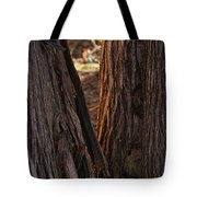 In The Cedars Tote Bag