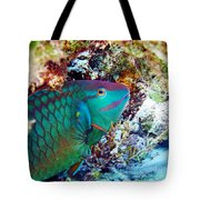 In The Lair Tote Bag