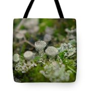 In The Land Of Little Mushrooms  Tote Bag