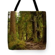 In The Land Of The Giants  Tote Bag