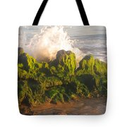 In The Magic Light Tote Bag