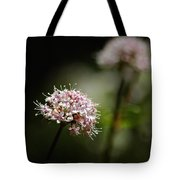 In The Quiet Of The Morning Tote Bag
