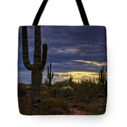 In The Shadow Of The Saguaro  Tote Bag