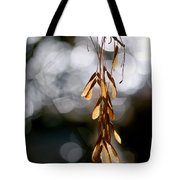 In The Silence Of The Monent Tote Bag