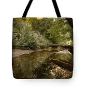 In The Stillness Of Paradise Tote Bag