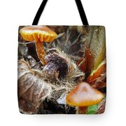In The Strawberry Patch  Tote Bag