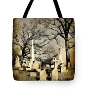 In View Tote Bag