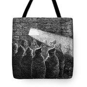 Inca Tomb: Chulpa Tote Bag