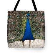 Indian Blue Tote Bag