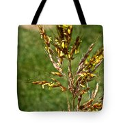 Indian Grass Seed Tote Bag