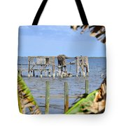 Indian River Roost Tote Bag