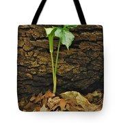 Indian Turnip 5582 0240 Tote Bag